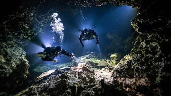 Berbasis di Meksiko, SJ Alice Bennett dianugerahi Up and Coming Underwater Photographer of the Year untuk bidikannya berjudul Tying in.