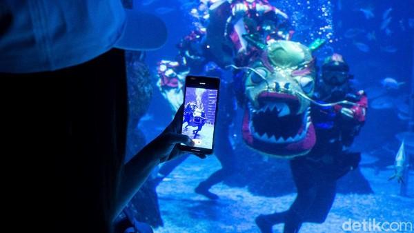 Seorang pengunjung mengabadikan momen pertunjukan naga bawah air melalui kamera ponsel di Jakarta Aquarium & Safari.