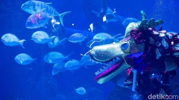 Yang tidak kalah penting, pihak Jakarta Aquarium juga menjalankan semua kegiatannya sesuai dengan standar protokol kesehatan. Jadi traveler bisa berwisata dengan aman.