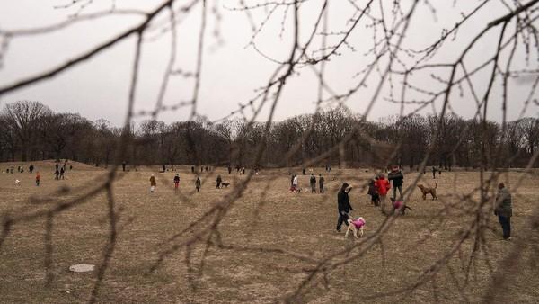 Suasana Prospect Park di wilayah Brooklyn, New York.