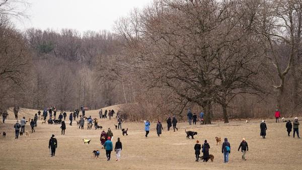 Prospect Park adalah sebuah taman umum seluas 585 hektar (2.37 km2), di Brooklyn, New York , Amerika Serikat.