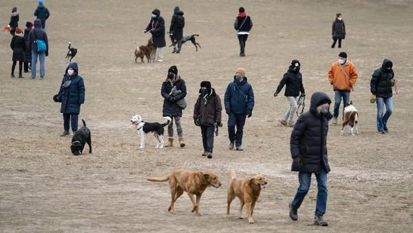 Memiliki hewan peliharaan bisa menjadi penambah semangat selama masa pandemi.