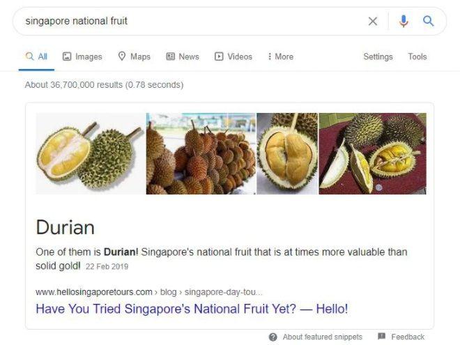durian jadi buah nasional Singapura, bagaimana dengan Indonesia?