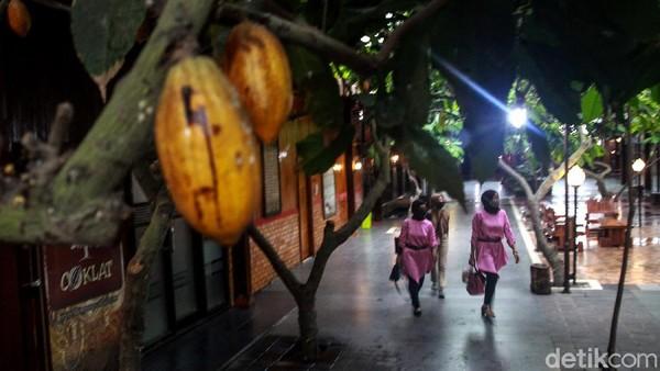 Saat ini Kampung Coklat menjadi salah satu destinasi wisata di Kabupaten Blitar.