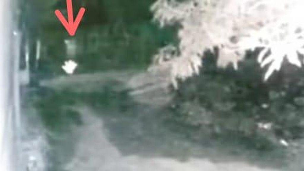 Kabar Viral Pocong di Sulsel Lari Dikejar Anjing Terekam CCTV