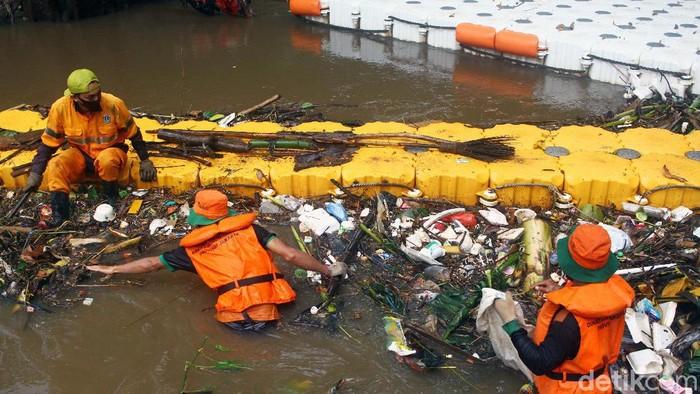 Akibat hujan deras banyak sampah yang terbawa dan menyangkut di Kali Krukut, Jakarta. Petugas pun harus kerja ekstra keras membersihkan sampah agar air tidak meluap.