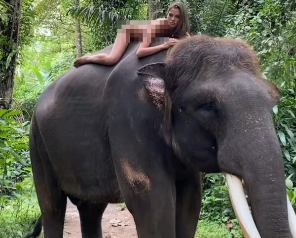 Foto kontroversial Alesya Kafelnikova dalam pengambilan gambar untuk kampanye perlindungan hewan di Bali. (dok. Instagram)