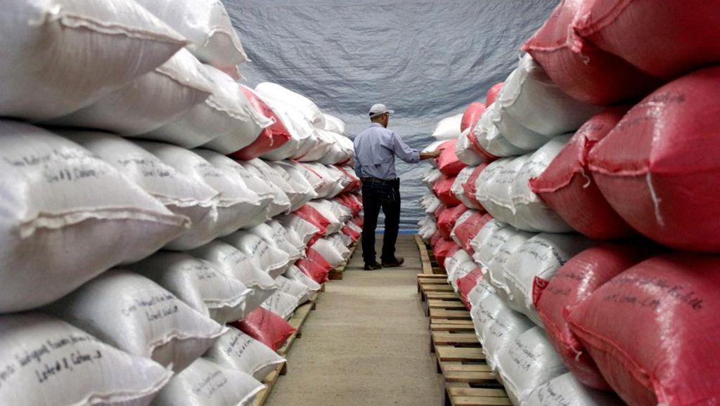 Selama Pandemi, BPS Catat Pertumbuhan Ekspor Pertanian hingga 14,03%