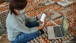 Kini Peternak Ayam di Blitar Bisa Jual Telur Pakai Aplikasi Pasar Mikro