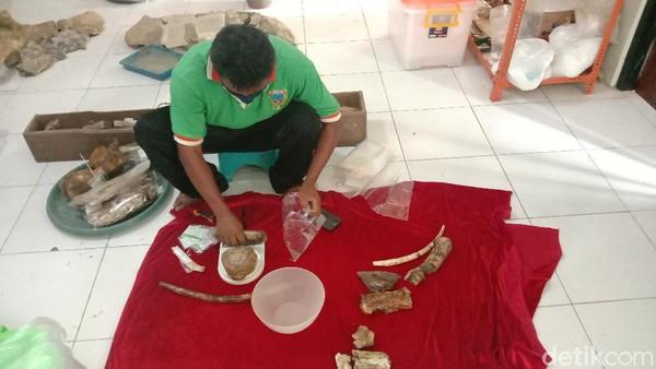 Di Situs Patiayam ditemukan dan identifikasi 17 hewan spesies, mulai hewan laut, rawa dan darat. Sebanyak 17 spesies itu tadi identifikasi tenaga ahli, Balai Pelestarian Situs Manusia Purba Sangiran dan Arkeologi Yogyakarta kurang lebih 2.700-an fragmen.