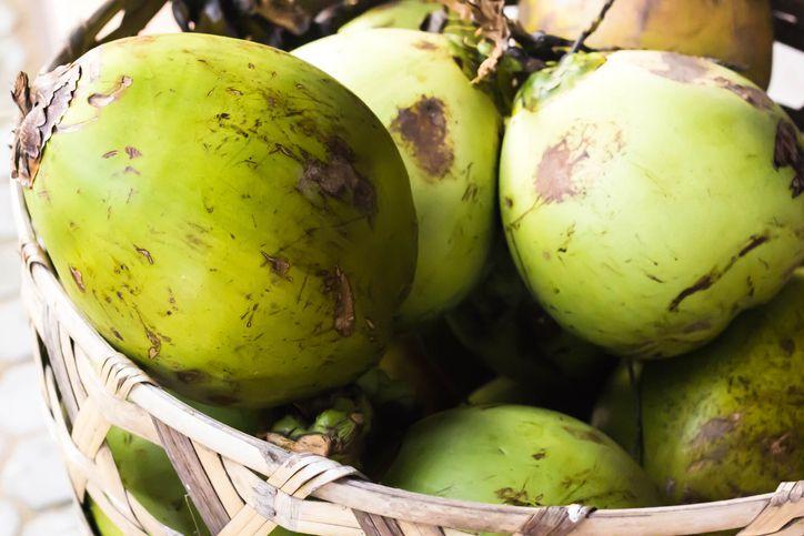 Terdampar di Pulau Tanpa Penghuni, 3 Orang Bertahan Hidup dengan Makan Tikus dan Kelapa