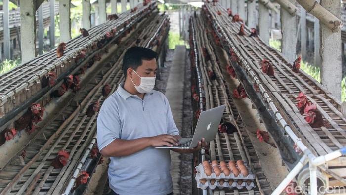 Mapan dan mempunyai karir bagus di Jakarta tidak menyurutkan niat untuk membangun desa. Ini salah satu contohnya.