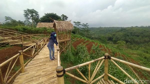 Agro Edu Wisata Garuda Mupuk cocok untuk menenangkan pikiran dengan suasana lahan perkebunan yang menyejukkan.