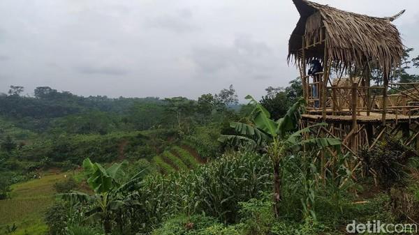 Sejumlah spot foto pun tersedia di Agro Edu Wisata Garuda Mupuk sebagai salah satu fasilitas kekinian, mulai dari rumah pohon, saung bambu dan lainnya di atas terasering lahan pertanian.