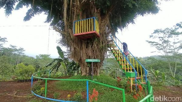 Nantinya Agro Edu Wisata Garuda Mupuk akan ada lokasi untuk tempat latihan untuk bertani.