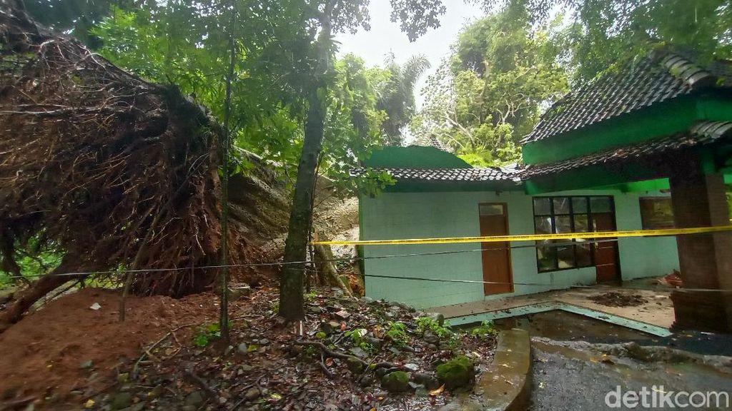 Akar Pohon Keramat Tumbang di Petilasan Ratu Kalinyamat Akan Dimuseumkan