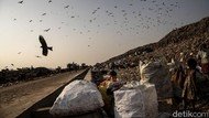 Potret Pemulung Cilik dari Tanah India