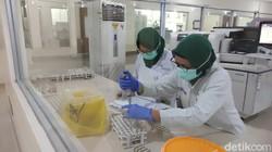 Vaksin Nusantara Dituding Bukan Karya Anak Bangsa, Penelitinya Meradang