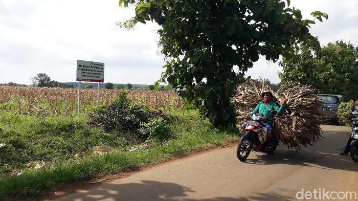 Desa Sumurgeneng, Kecamatan Jenu, Tuban disebut-sebut sebagai kampung miliarder. Sebab, ratusan warganya mendapat uang ganti rugi lahan untuk kilang minyak hingga miliaran Rupiah.