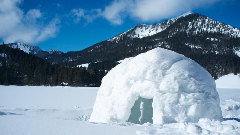 Ilustrasi igloo