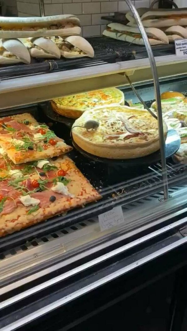 Seekor tikus mencicipi buffet di Bandara Charles De Gaulle, Paris. Kok bisa lolos, ya?