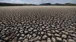 Nestapa Keringnya Laguna di Kolombia