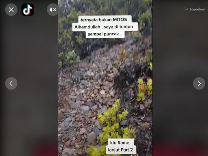 Viral pendaki Lawu tersesat kemudian dituntun burung Jalak, Jumat (19/2/2021).
