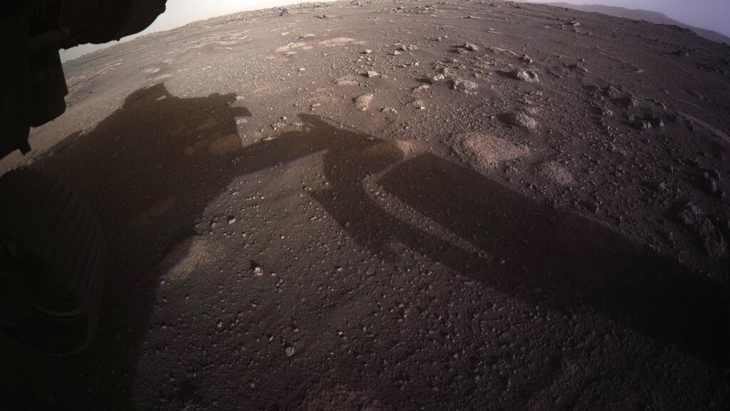 Beberapa Organisme Bumi Bisa Bertahan Hidup Sementara di Mars