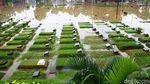 TPU Jeruk Purut Terendam Banjir