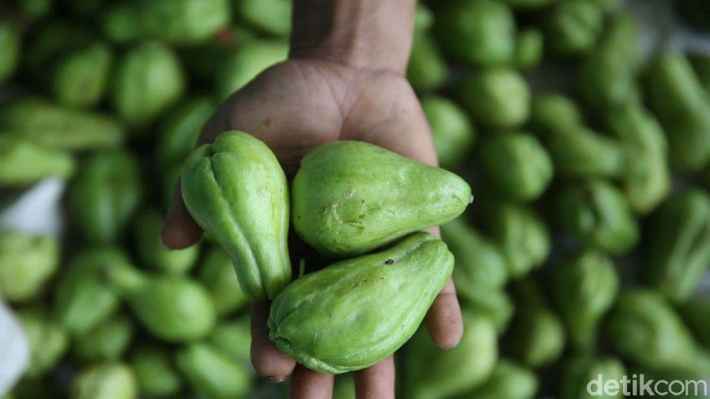 Labu Acar Datangkan Cuan Bagi Petani di Bandung