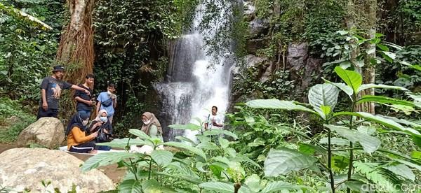 Selain bisa menikmati pemandangan alam, traveler juga bisa makan buah durian disamping air terjun Curug Pitu, Desa Kemiri, Kecamatan Sigaluh, Banjarnegara.
