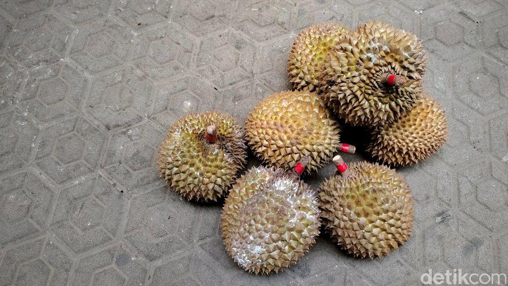 Masa Pandemi Penjualan Durian Sinapeul Majalengka Naik 100 Persen
