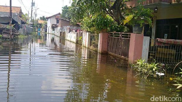 Banjir di Kota Pekalongan, Jawa Tengah, Senin (22/2/2021).