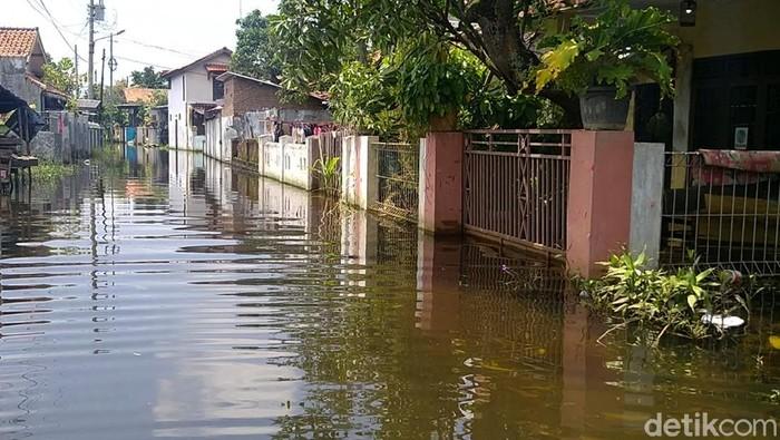 Banjir masih merendam sejumlah rumah di Kota Pekalongan, Jawa Tengah. Warga terdampak menyebut terjangan banjir berjilid-jilid terjadi sejak akhir Januari 2021.
