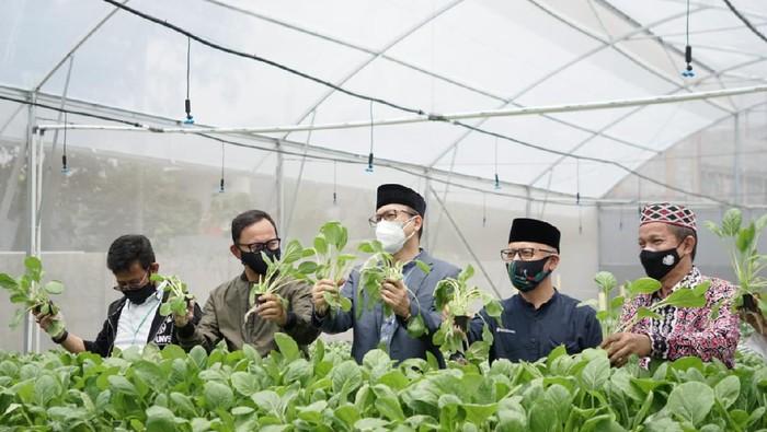 BI Jabar serahkan bantuan teknologi ke sejumlah ponpes untuk bangun ketahanan pangan.