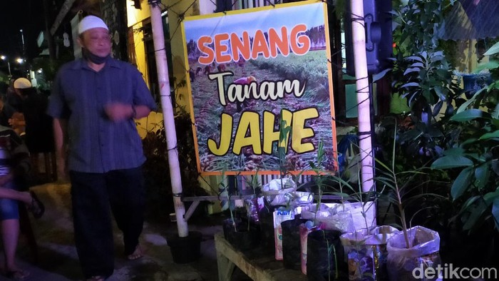 kampung jahe