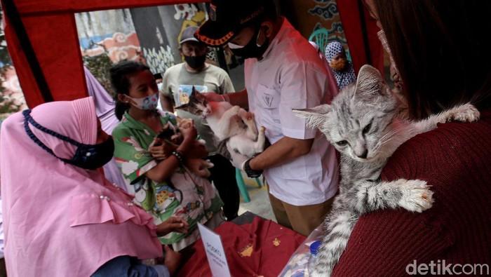 Dinas Ketahanan Pangan, Kelautan dan Pertanian (KPKP) DKI Jakarta adakan pemeriksaan kesehatan gratis bagi hewan peliharaan yang terdampak banjir di Tebet.