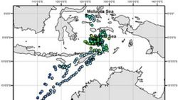Paus Pilot Terdampar di Pantai Bangkalan, Ini Tanggapan Pakar Biologi ITS