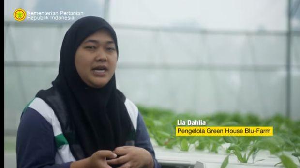 Punya Kebun Hidroponik, Wanita Ini Ajak Para Korban PHK Jadi Petani