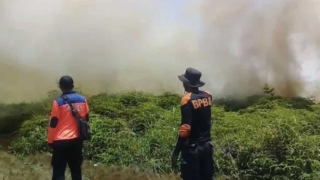 Kebakaran Lahan Gambut di Sumbar Belum Padam Usai 10 Hari