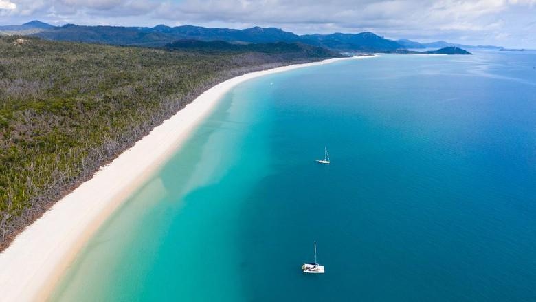 Pantai Whitehaven di Queensland jadi pantai terbaik di dunia 2021 versi TripAdvisor