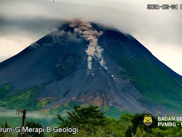 Awan panas guguran Gunung Merapi 24/2/2021 pagi