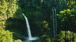 Bikin Adem, Ini 5 Curug Asri untuk Lepaskan Penat di Bogor