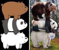 fotoinet gemasnya animasi hewan di dunia nyata