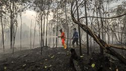 Hingga Maret 25 Hektare Lahan di Riau Terbakar, 8 Pelaku Ditangkap