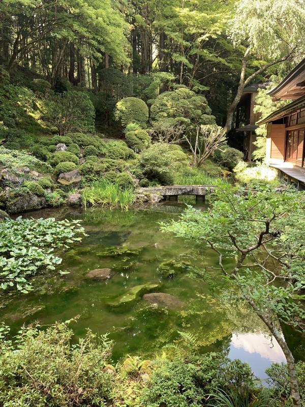 Ada pula ruanganuntuk berdoa atau tempat istirahat para biksu saja. Di sebelah kiri terdapat kolam khas Jepang dengan bunyi gemercik air yang bikin syahdu dan bersuasana nyaman.