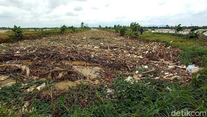 Sungai Piji di Kabupaten Kudus, Jateng, dipenuhi sampah. Warga pun meminta pemerintah turun tangan karena khawatir aliran sungai tersumbat dan sebabkan banjir.