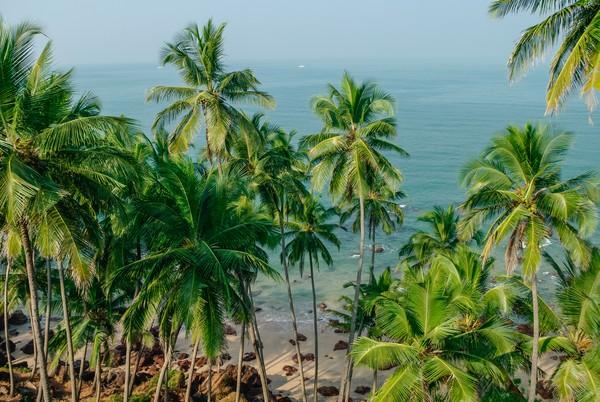 Kamu bisa berbarik di pinggir pantai sembaari menggunakan payung, atau tidur dengan hammock menikmati pemandangan pantai.
