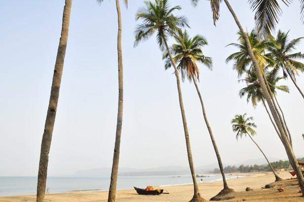 Pantai Agonda merupakan salah satu pantai terbersih yang dimiliki India karena memang tidak terlalu ramai.