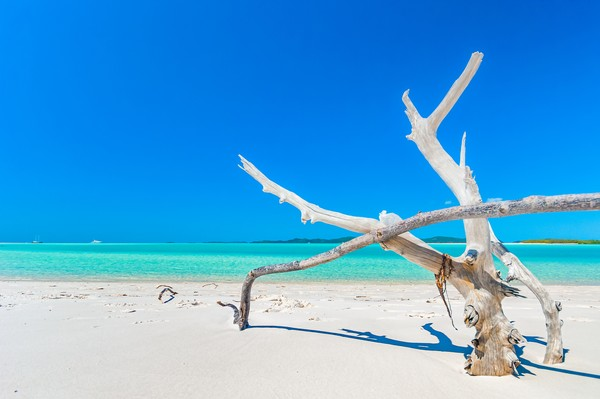 Berdasarkan lokasinya saja kita sudah bisa membayangkan hamparan pasir putih dengan laut yang jernih kan? Adapun jenis pasir di pantai ini adalah Silica, yang berarti pasir tak hanya berwarna cerah namun juga lembut.
